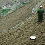 Planting seeds on terraced fields near Daolana village